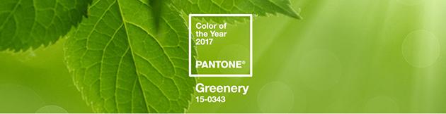 Greenery: a cor Pantone 2017 ! decoração