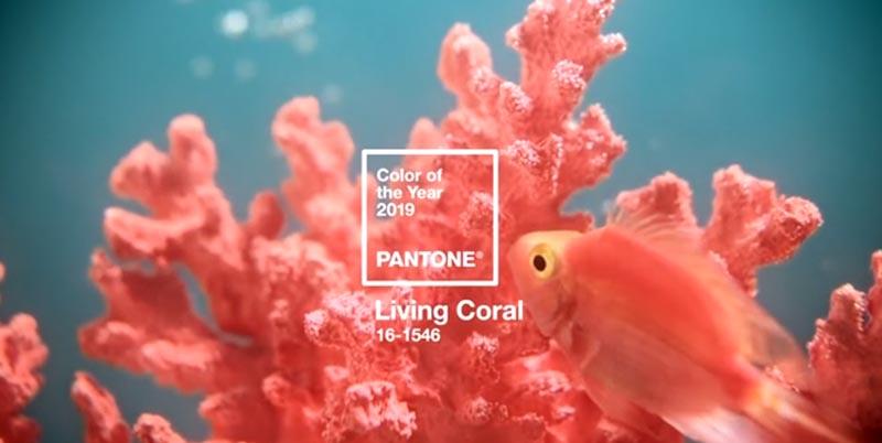 Decorando com a cor Pantone 2019 – Living Coral - veja todos os detalhes da cor de 2019, confira dicas, inspirações, referências e muito mais! o melhor post.